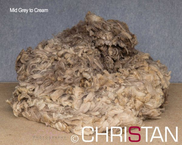 Christan-Farm-Corriedale-14--Mid-grey--to-cream-approx-110mm-long-(2)
